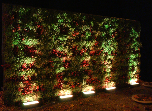 green wall lighting. Single Sided Or Double Sided. Green Walls Wall Lighting O