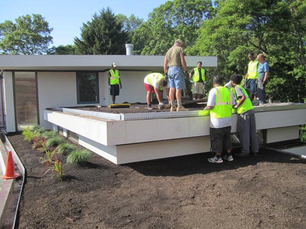 Green-Roof-Installatio_Berty_web