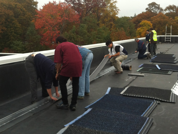 Green-Roof-InstallationTraining_web