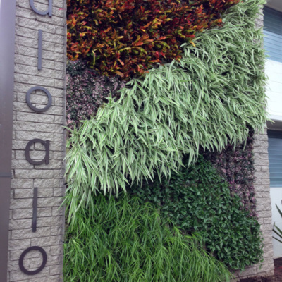 green living wall herb wall installer top company