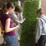 Mobile Edible Wall Unit_3-15-2013_Students_2_Web