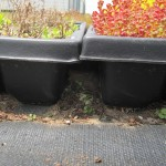 green living roof tray system