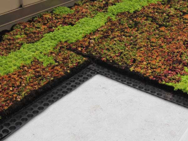 In Urban Settings Where Vegetation Is Sparse (think Of Cities Like Newark  And New York), Green Roof Systems From Green Living Technologies  Incorporated Do ...