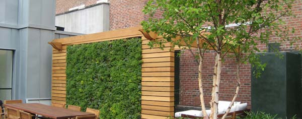 green-living-walls-installer-company-18