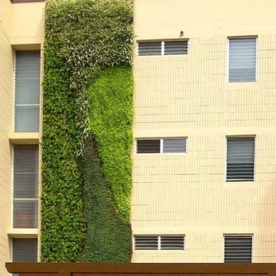 Fine Living Wall Systems Nz Collection - Wall Art Design ...