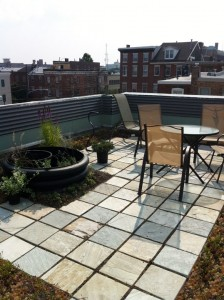 Amenity Space - Intensive Green Roof Garden or as Simple & Inexpensive as a Patio