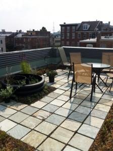 Roof Patios Intensive Gardens Green Living Technologies